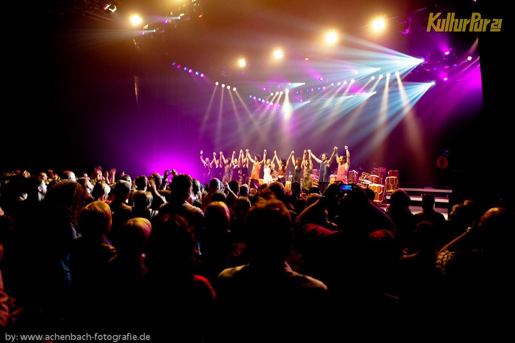 GOCOO am Montag, 13. Juni 2011 bei KulturPur